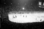 Avard Woolaver, Toronto, Maple Leaf Gardens, 1998, hockey, Toronto Maple Leafs,